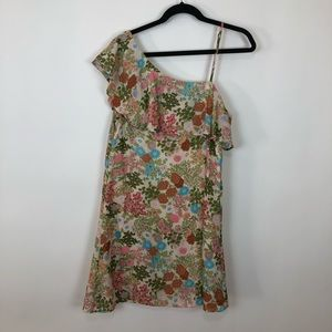 Anthropologie entro 1 shoulder floral dress large